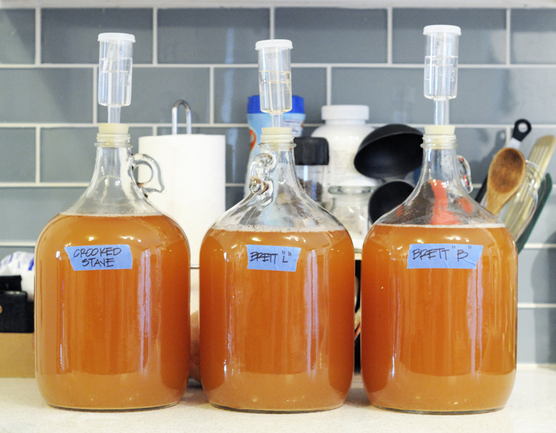 1-gallon each of Brettanomyces Bruxellensis, Brettanomyces Lambicus, and cultured Crooked Stave Surette.
