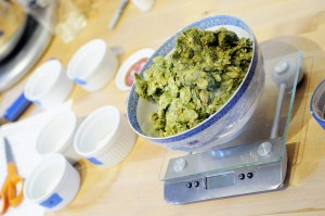 This SMaSH beer featured insane amounts of whole-lead Citra hops.
