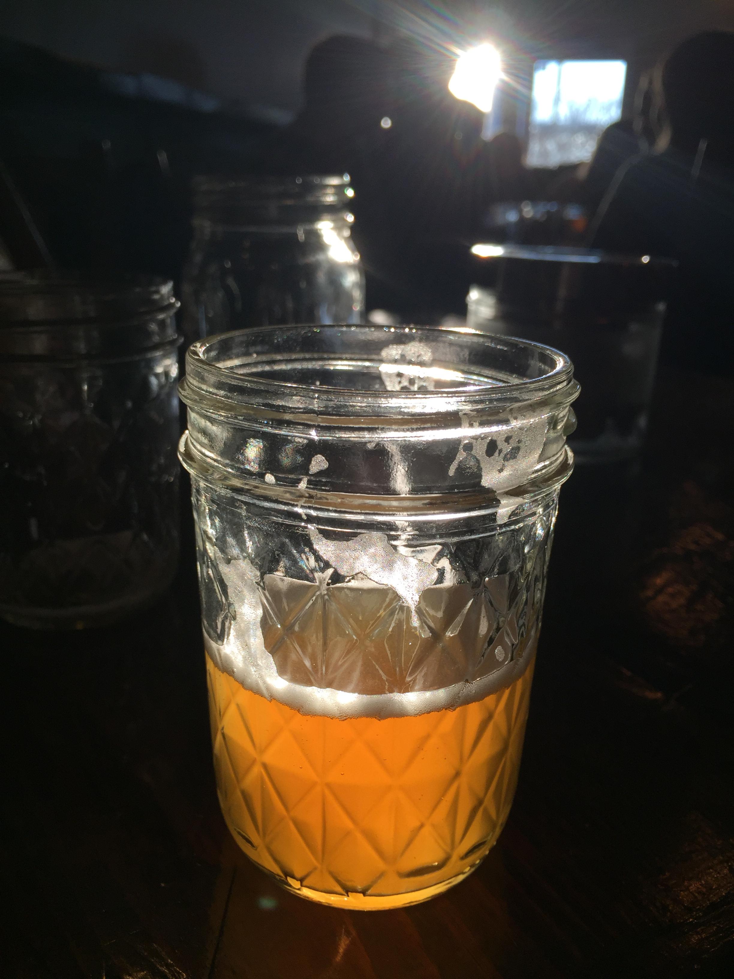 Magnify Brewing Co. Pollinator IPA